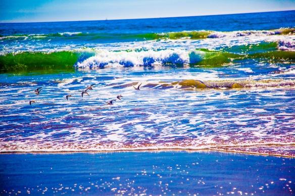 BEACH(WAVES)1